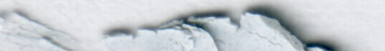 1500x200-hhkrk7sftgftu
